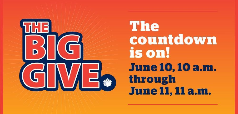 Mark Your Calendar for The Big Give!