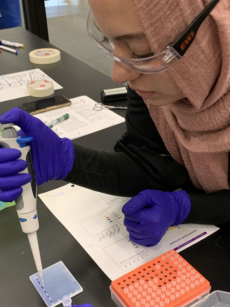 Micro-pipetting practice